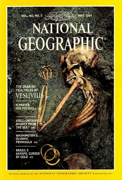 Image result for national geographic pompeii
