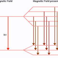 Mercury Energy Level Diagram Strat Wiring Bridge Tone Zeeman Effect   Welcome To Physics 122