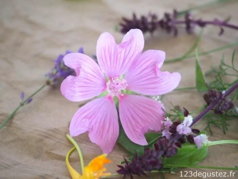 salade herbes et fleurs