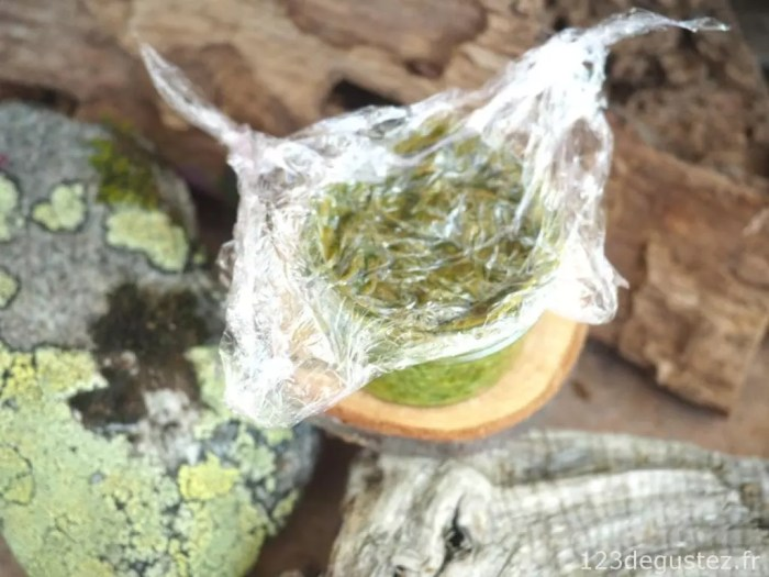 pesto basilic pour l'hiver