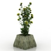 Wildflowers Bonsai Free 3dmax Model