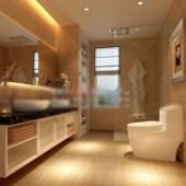 Toilet Lavatories