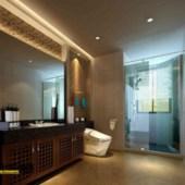 European-style Bathroom
