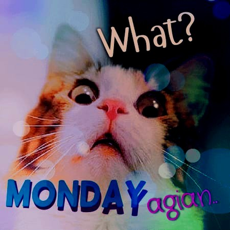 Happy Monday Meme