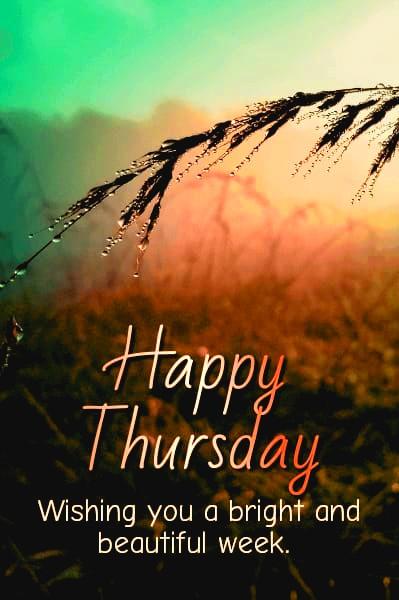 Happy Thursday Pics