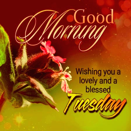 Happy Tuesday Blessing