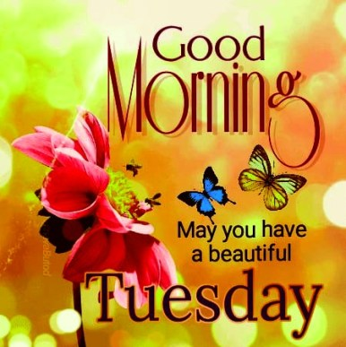 good Tuesday morning images » 123GoodMorningQuotes: Good Morning ...