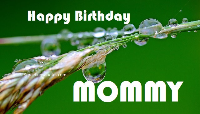 mom birthday quotes with picture