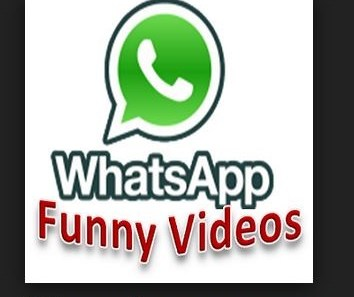 Funny baby videos free download for whatsapp 3gp