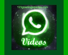 rare-whatsapp-videos free download