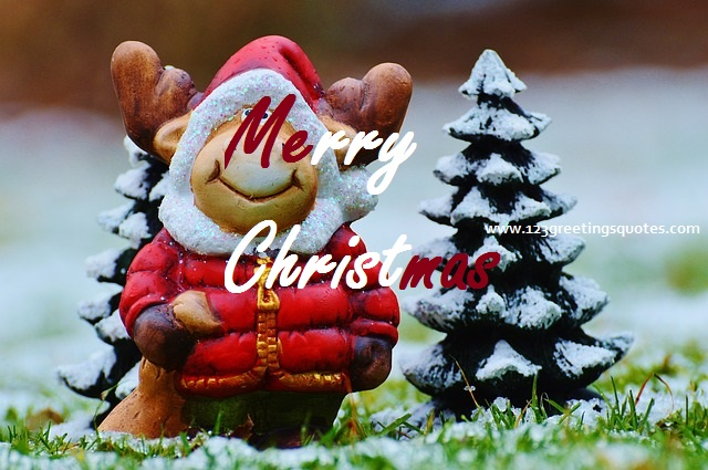 Merry Christmas Greetings Quotes - 37 Great Wishes