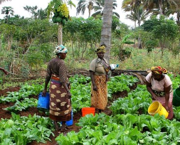 International Day of Rural Women theme