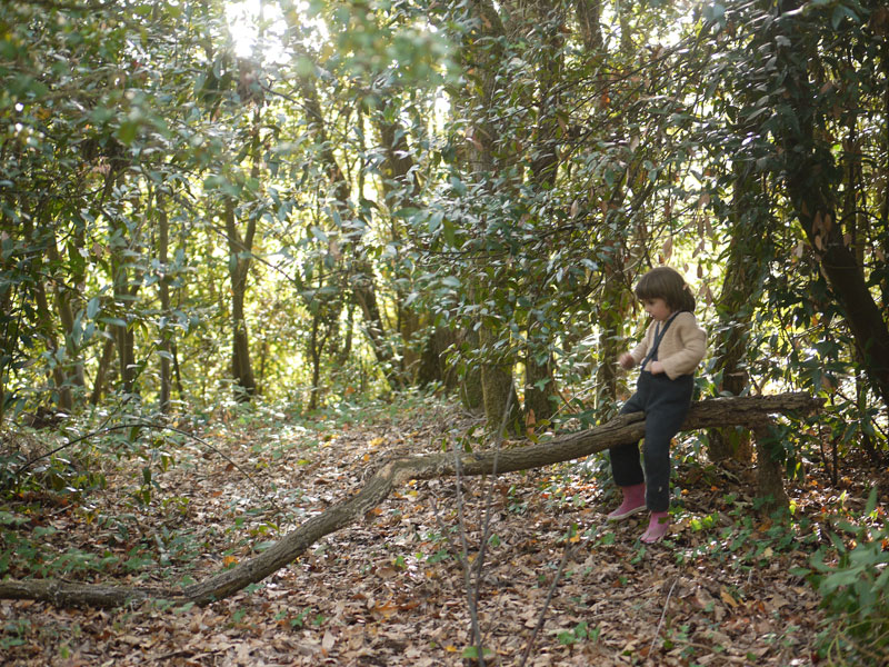 Une petite fille jouant au cheval sur un tronc d'arbre couché dans le bois de la Forest School 123 Nous irons aux bois