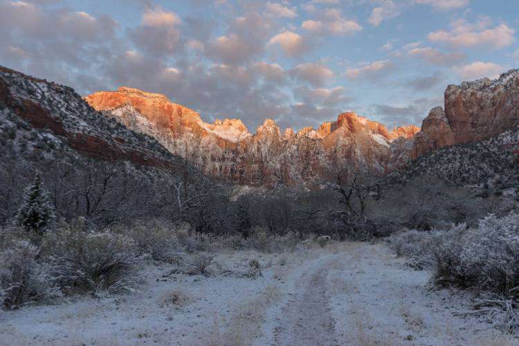 zions 116
