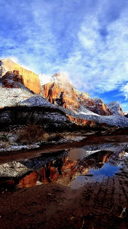 ZIONS 119
