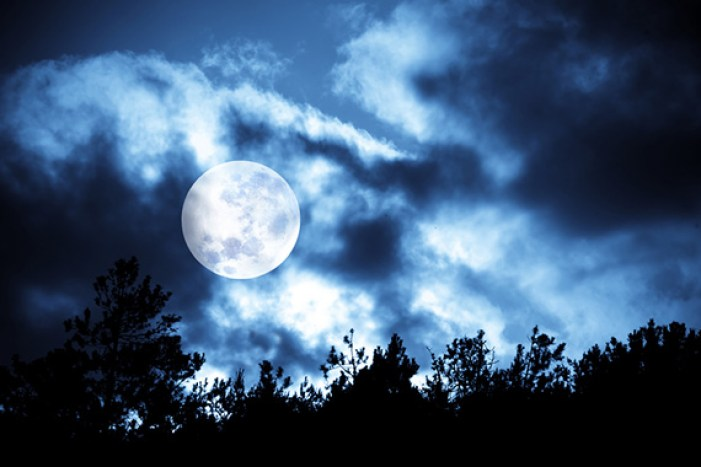 full-moon-halloween-photography