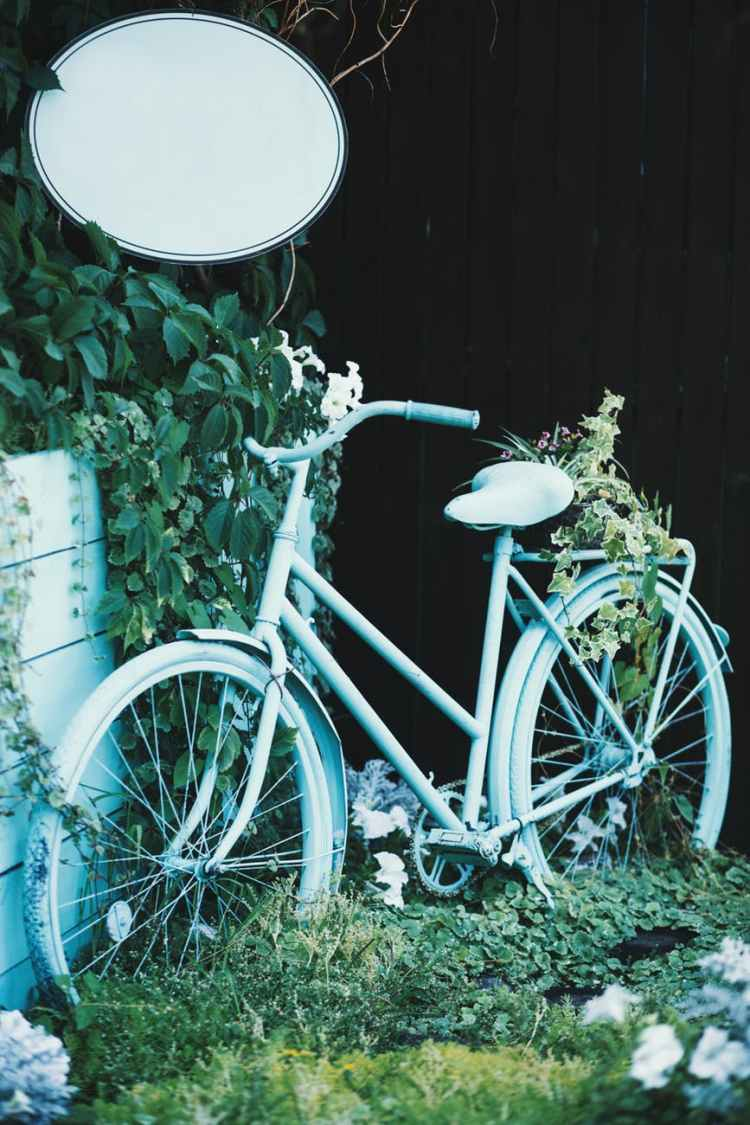 blue bicycle near green plants