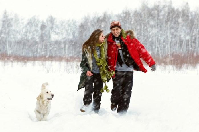 Dog walk snow.jpg
