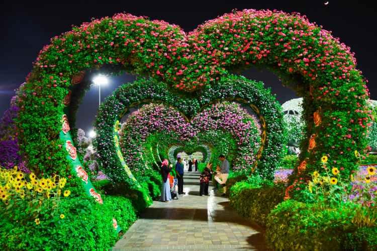 heart shaped pink and purple flower garden