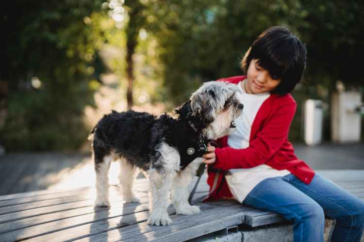 child sitting on bench with dog