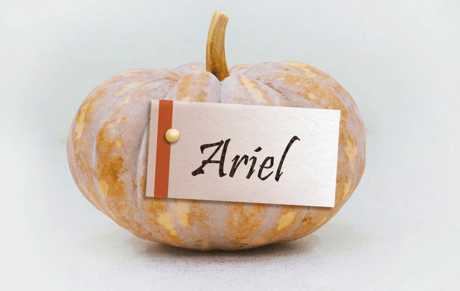 pumpkinname