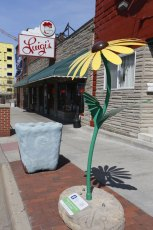 This 7 ft.-6 in. Black-Eyed Susan sculpture stands tall outside of Luigi's Restaurant at 105 N. Main St., Akron.
