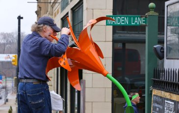 Artist Stephen Canneto arranges the Tiger Lily sculpture on E. Market Street in downtown Akron.