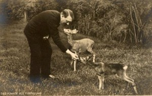 Adolf Hitler feeding deer