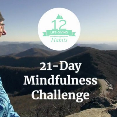 12 Life-Giving Habits 21-Day Mindfulness Challenge