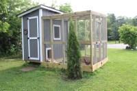 Our Backyard Chicken Coop | 12 Oaks