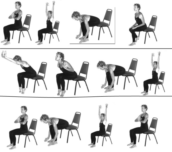 1000 ideas about Chair Exercises on Pinterest  Exercises