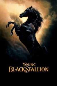 The Young Black Stallion (2003)