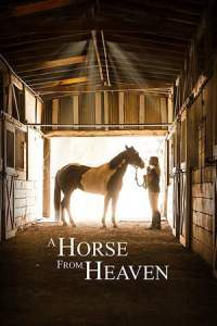 A Horse from Heaven (2019)