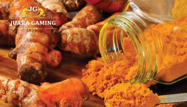 Manfaat dan Kegunaan Kunyit Untuk Ayam Jago Super