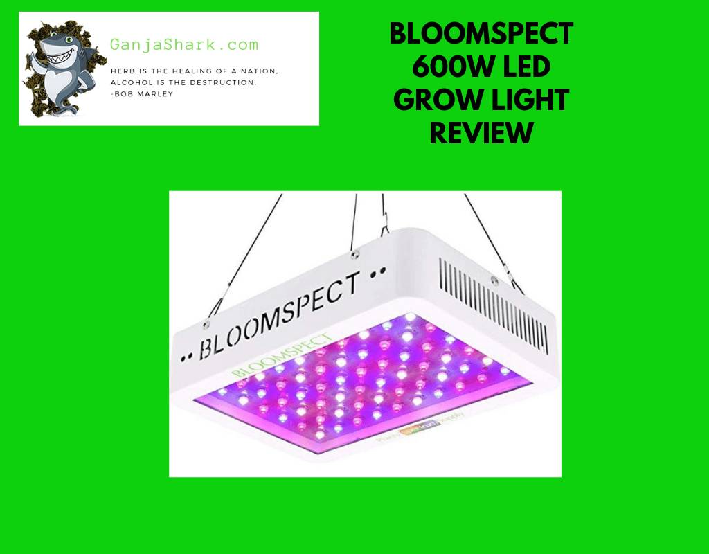 Bloomspect 600W Led Grow Light Review