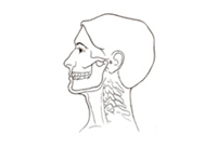 TMJ Symptoms: Neck Pain and Shoulder Pain Caused by Jaw