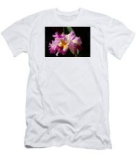 Nancy's Novelty Photos in Pixels Products - Men's t-shirt