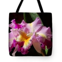 Nancy's Novelty Photos on Pixels Products Tote Bag