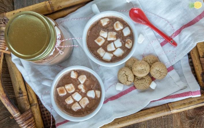 Chai Spiced Hot Cocoa Mix b