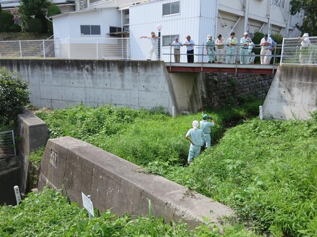 寺沢の砂防堰堤。5年前に浚渫されましたが、既に一杯となり、土砂が下流に流れ込みます。