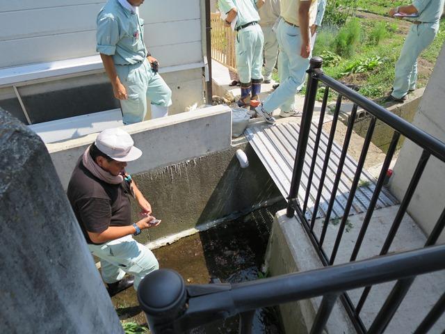 西河原地区で。用水の漏水対策。
