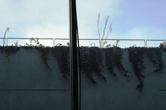 サンクンガーデン部分の窓ガラス・アルミ枠のたわみ