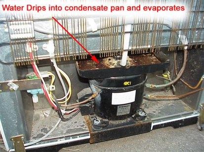 Amana Refrigerator Wiring Diagram 024 Fridge Condensate 1 5 10 365 Ecotip Blog