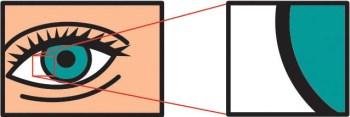 VectorExample