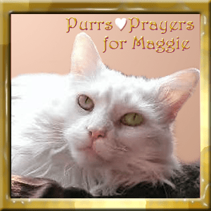 Purrs+and+Prayers+for+Maggie