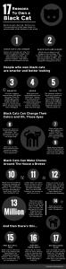 17-reasons-black-cat-final