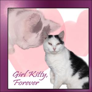 Girl Kitty, Forever