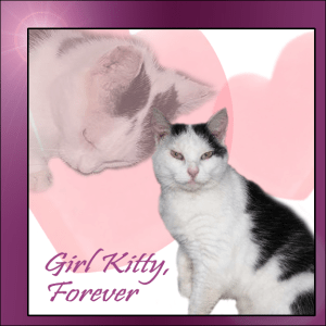 Girl Kitty, Forever