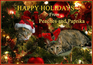 Happy Holidays from Peaches&Paprika