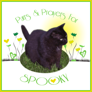 Purrs and Prayers for SPOOKY